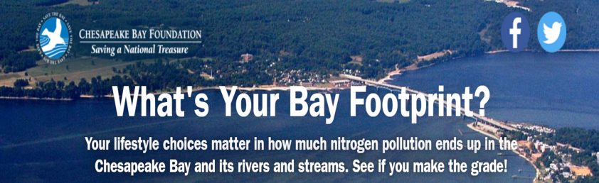 What's Your Bay Footprint?